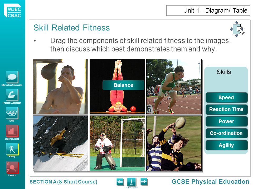 Information/Discussion Practical Application Links Diagram/Table Activity Revision GCSE Physical Education MAIN MENU Skill Related Fitness SECTION A (& Short Course) Unit 1 - Diagram/ Table Drag the components of skill related fitness to the images, then discuss which best demonstrates them and why.