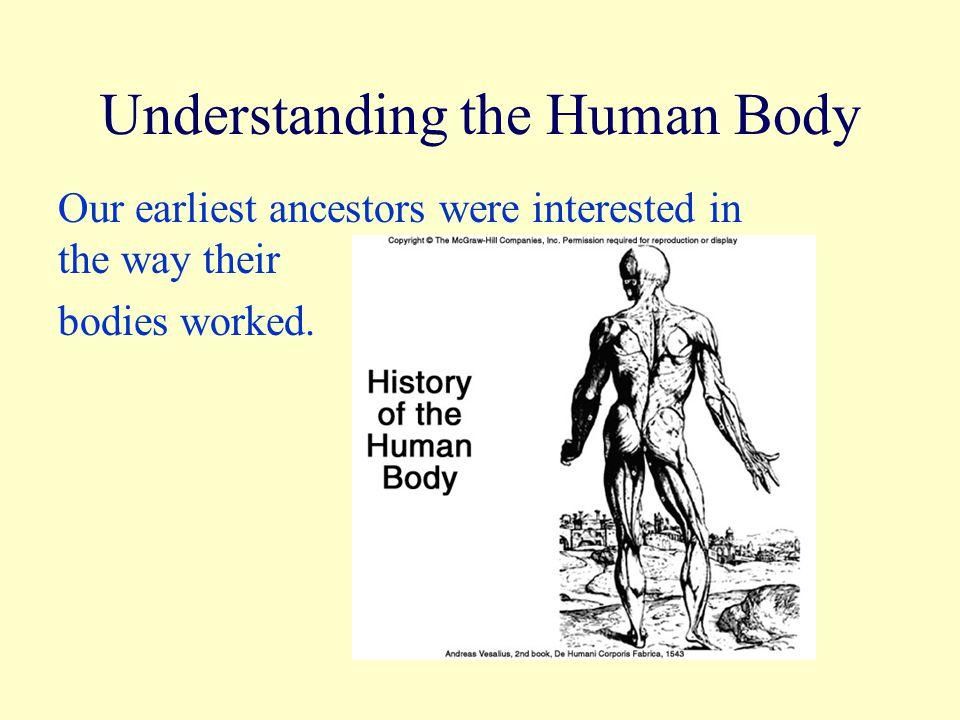 Ungewöhnlich Wesentliches Der Anatomie Und Physiologie Mcgraw Hill ...