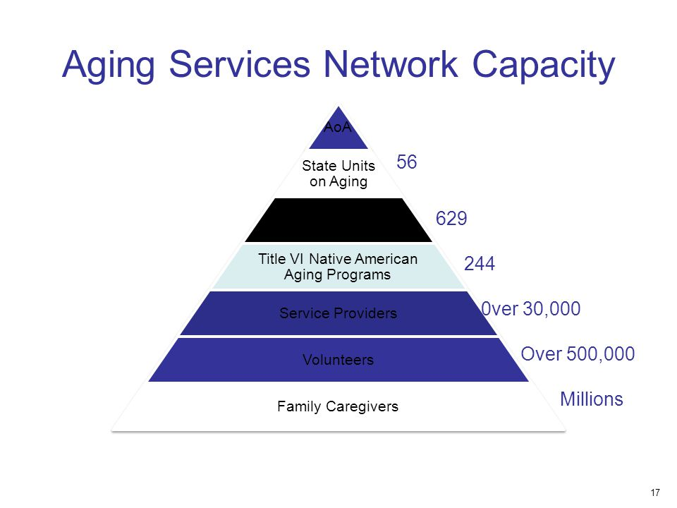 AoA State Units on Aging Area Agencies on Aging Title VI Native American Aging Programs Service Providers Volunteers Family Caregivers ver 30,000 Over 500, Millions Aging Services Network Capacity