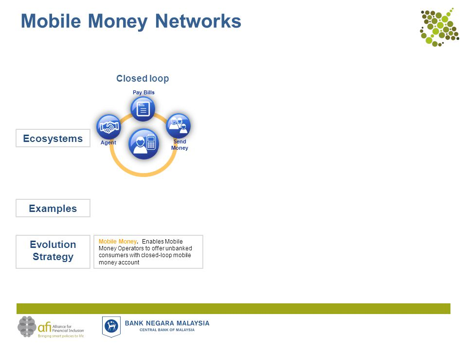 Mobile Money Networks Closed loop Ecosystems Evolution Strategy Mobile Money.