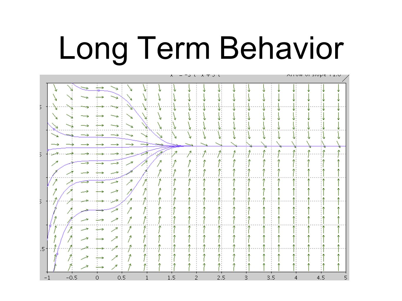 Long Term Behavior