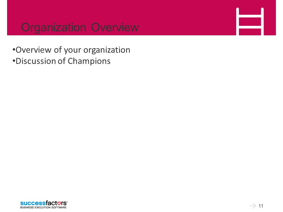 Organization Overview 11 Overview of your organization Discussion of Champions
