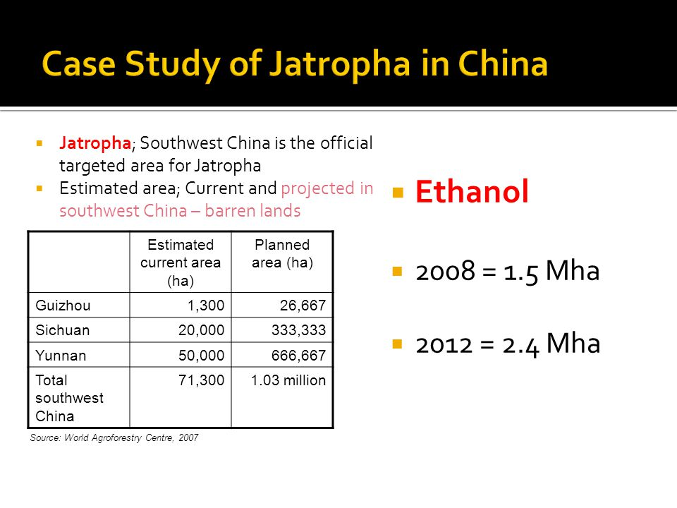 Estimated current area (ha) Planned area (ha) Guizhou1,30026,667 Sichuan20,000333,333 Yunnan50,000666,667 Total southwest China 71, million  Jatropha; Southwest China is the official targeted area for Jatropha  Estimated area; Current and projected in southwest China – barren lands  Ethanol  2008 = 1.5 Mha  2012 = 2.4 Mha Source: World Agroforestry Centre, 2007