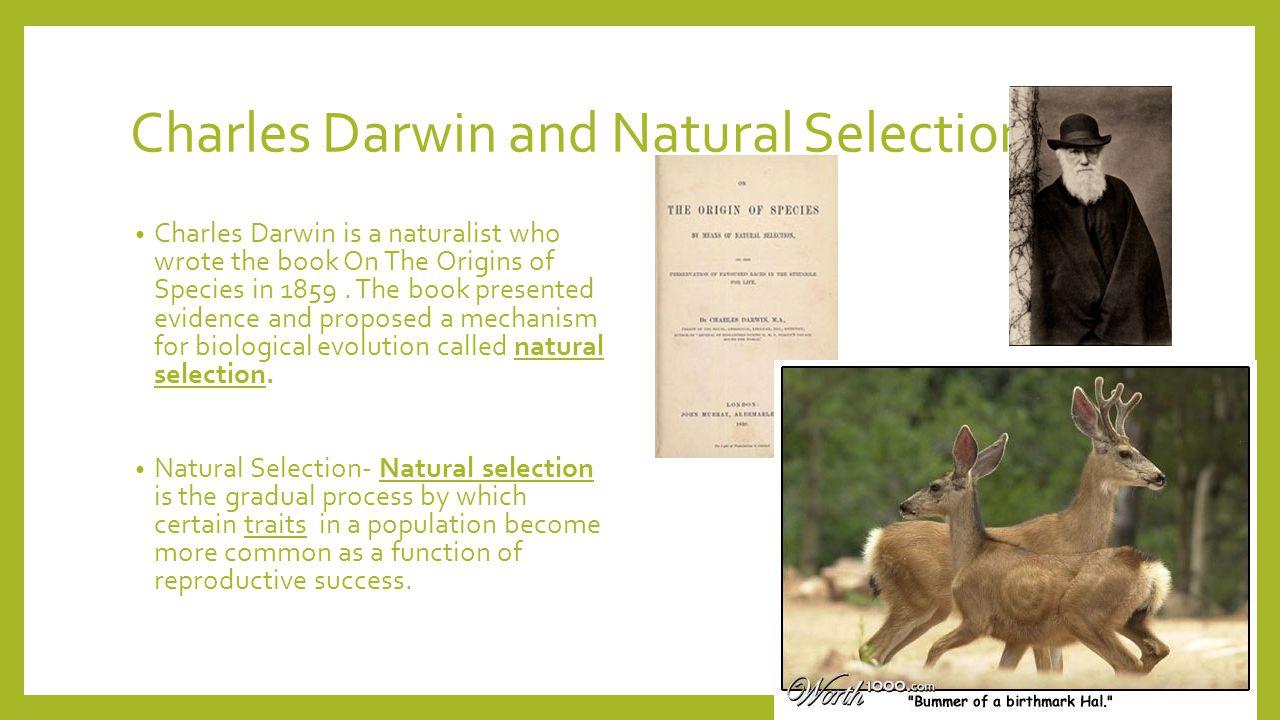 the origin of species by charles darwin created a worldwide stir in 1859 Jens ferdinand willumsen's fertility and of species from charles darwin, on the origin of in charles darwin's on the origin of species (1859.