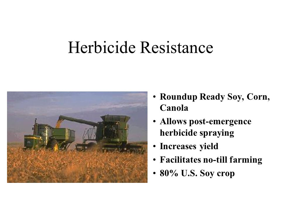 Herbicide Resistance Roundup Ready Soy, Corn, Canola Allows post-emergence herbicide spraying Increases yield Facilitates no-till farming 80% U.S.