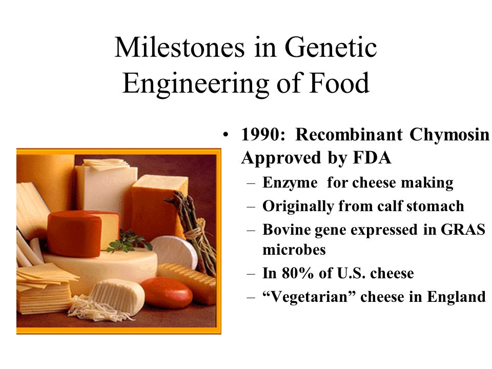 Milestones in Genetic Engineering of Food 1990: Recombinant Chymosin Approved by FDA –Enzyme for cheese making –Originally from calf stomach –Bovine gene expressed in GRAS microbes –In 80% of U.S.