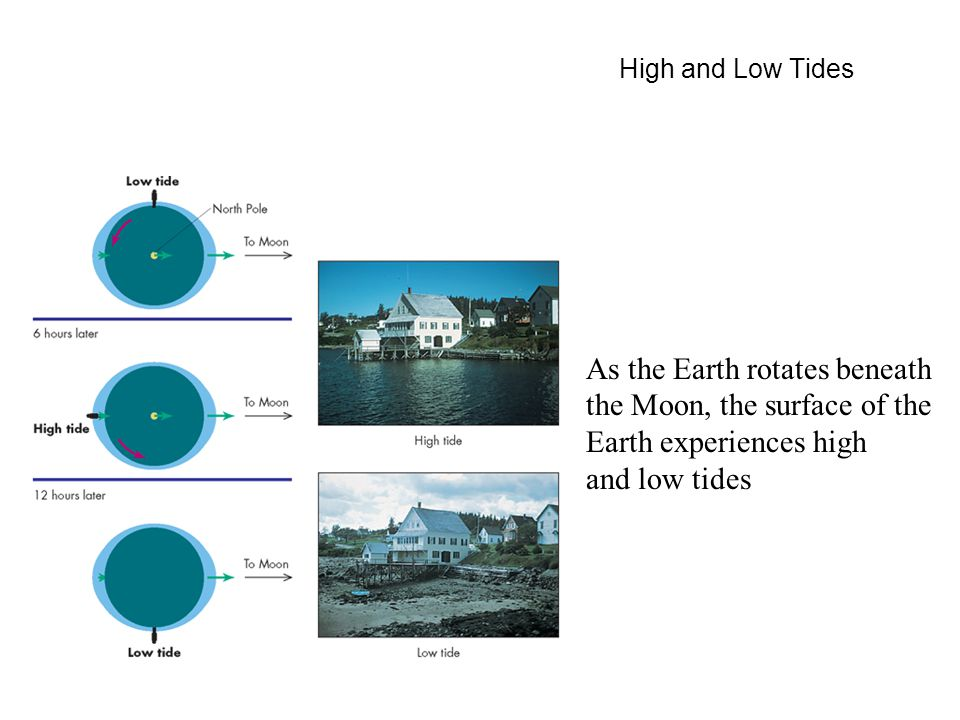 High and Low Tides As the Earth rotates beneath the Moon, the surface of the Earth experiences high and low tides