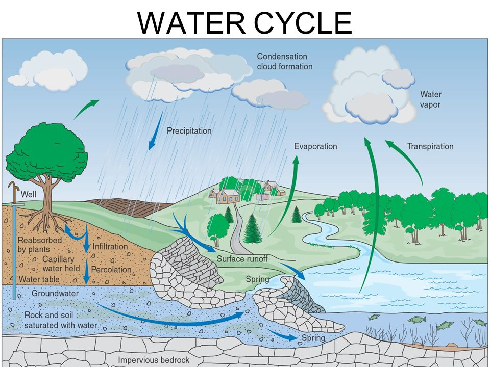 Percolation water cycle water ionizer percolation definition water cycle ccuart Gallery