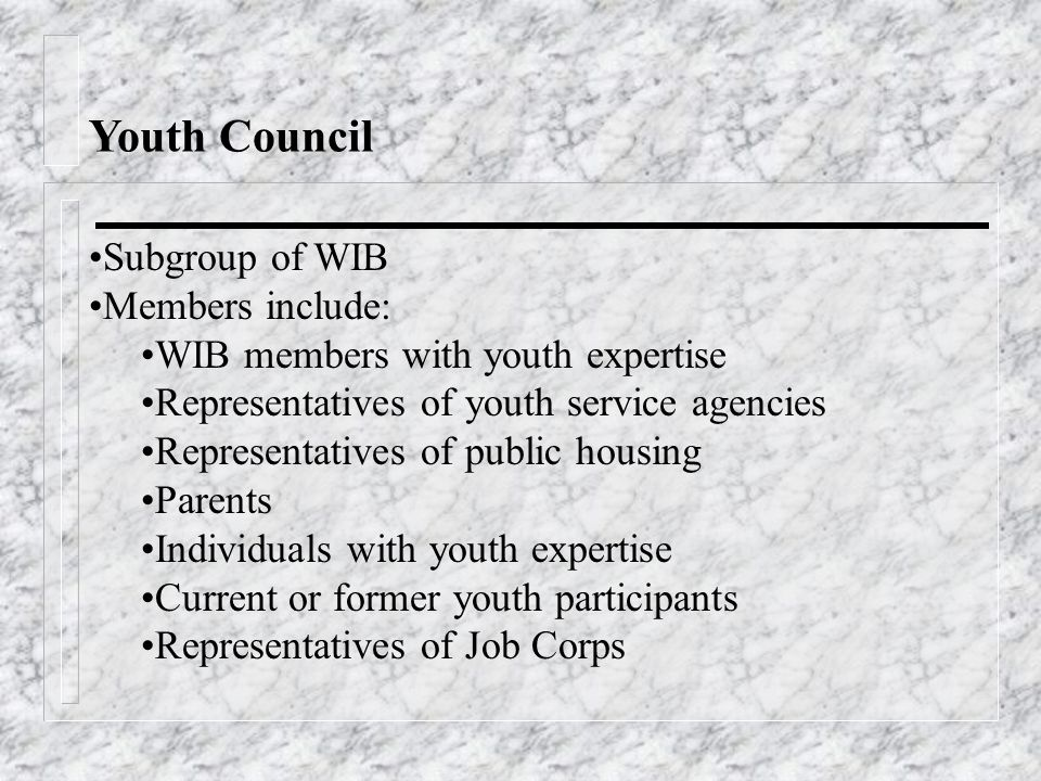 Youth Council Subgroup of WIB Members include: WIB members with youth expertise Representatives of youth service agencies Representatives of public housing Parents Individuals with youth expertise Current or former youth participants Representatives of Job Corps