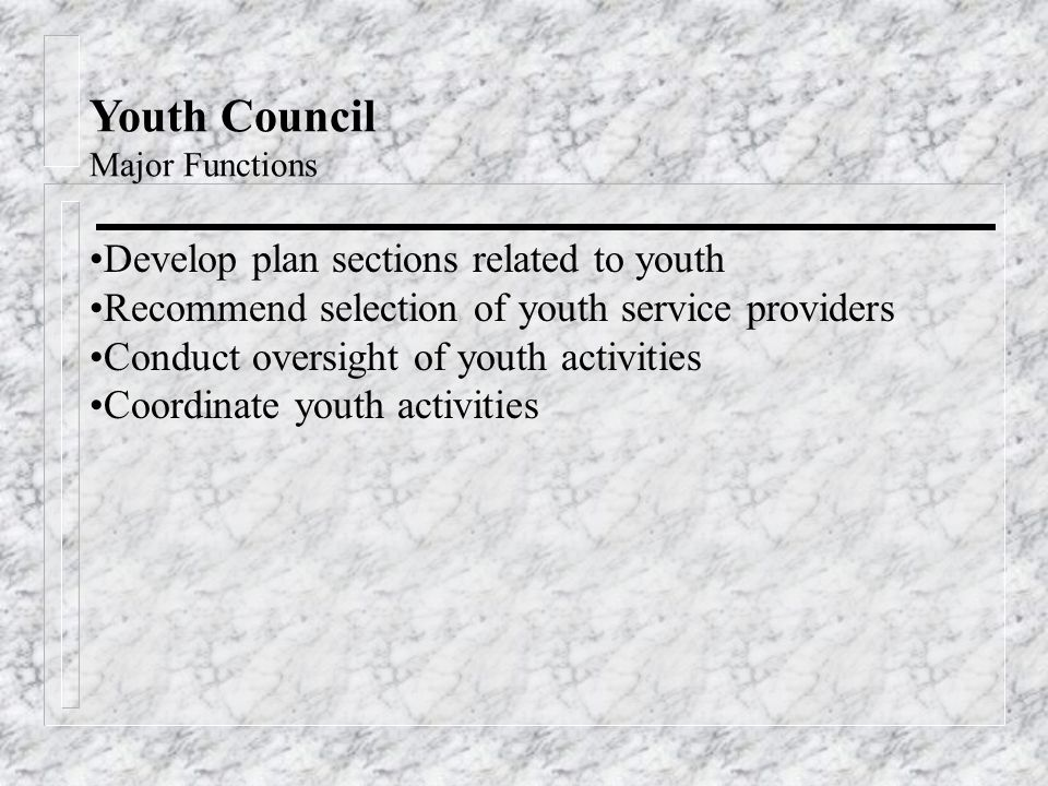 Youth Council Major Functions Develop plan sections related to youth Recommend selection of youth service providers Conduct oversight of youth activities Coordinate youth activities