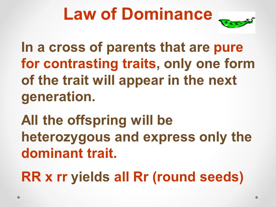 Law of Dominance * In a cross of parents that are pure for contrasting traits, only one form of the trait will appear in the next generation.