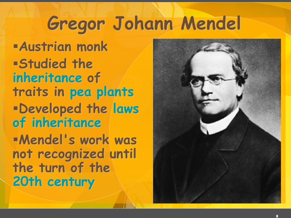 2 Gregor Mendel ( ) Responsible for the Laws governing Inheritance of Traits