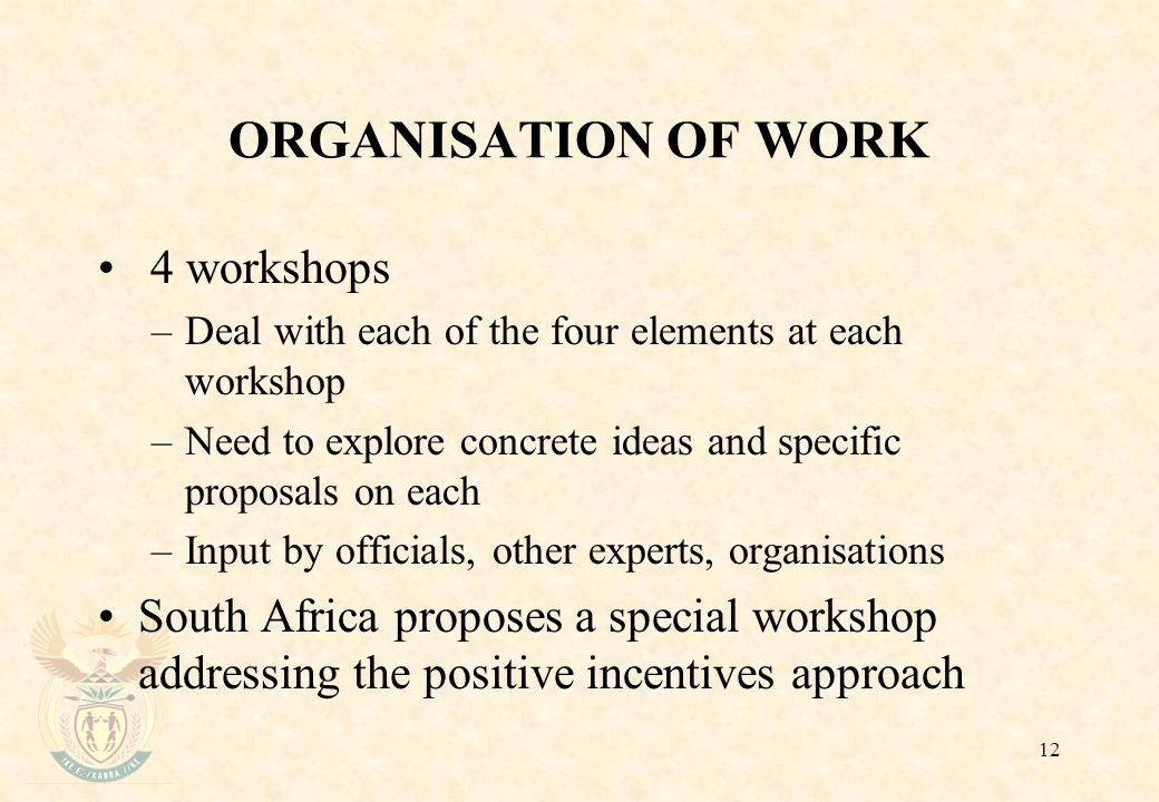 12 ORGANISATION OF WORK 4 workshops –Deal with each of the four elements at each workshop –Need to explore concrete ideas and specific proposals on each –Input by officials, other experts, organisations South Africa proposes a special workshop addressing the positive incentives approach