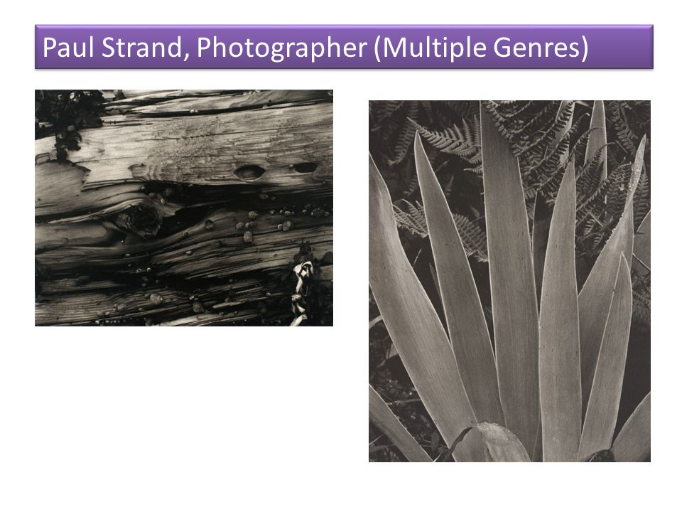 Paul Strand, Photographer (Multiple Genres)