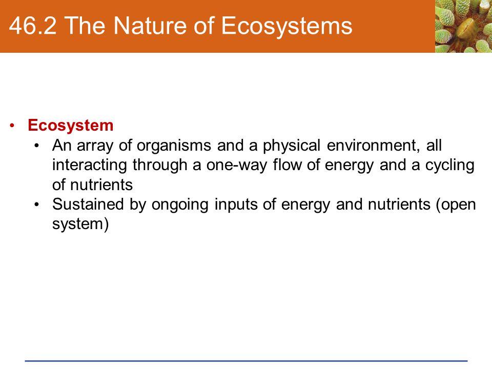 "Presentation ""Albia Dugger Miami Dade College Chapter 46 Ecosystems."""