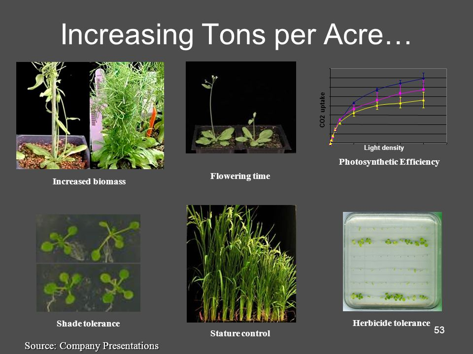 53 Increasing Tons per Acre… Increased biomass Shade tolerance Flowering time Photosynthetic Efficiency Stature control Herbicide tolerance Source: Company Presentations