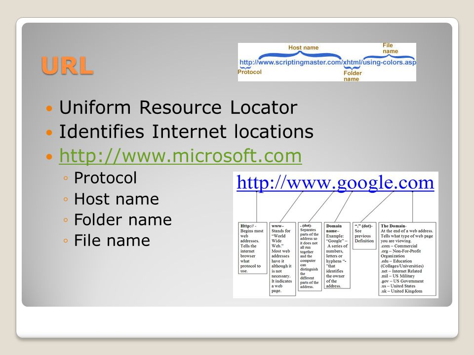 URL Uniform Resource Locator Identifies Internet locations   ◦Protocol ◦Host name ◦Folder name ◦File name