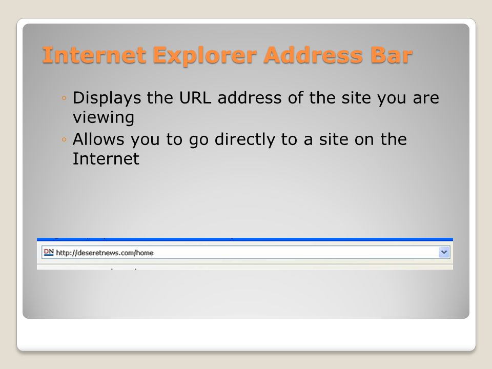 Internet Explorer Address Bar ◦Displays the URL address of the site you are viewing ◦Allows you to go directly to a site on the Internet
