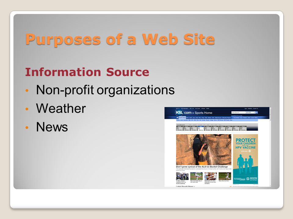 Purposes of a Web Site Information Source Non-profit organizations Weather News