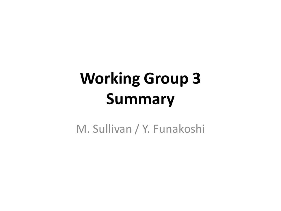 Working Group 3 Summary M. Sullivan / Y. Funakoshi