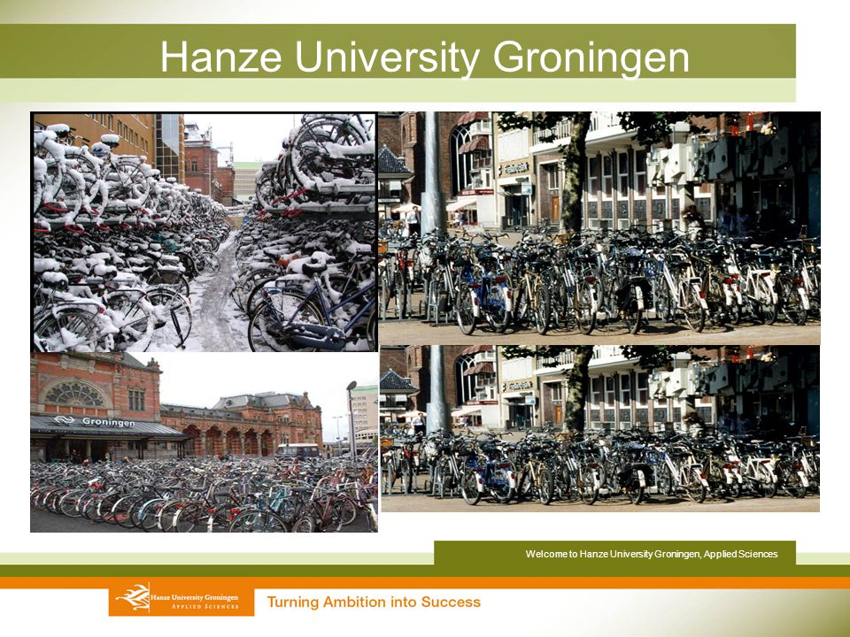 groningen university of applied science