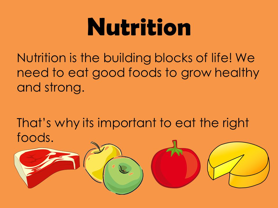 Nutrition Nutrition is the building blocks of life.