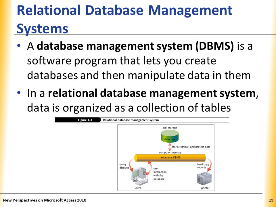 XP Relational Database Management Systems A database management system (DBMS) is a software program that lets you create databases and then manipulate data in them In a relational database management system, data is organized as a collection of tables New Perspectives on Microsoft Access