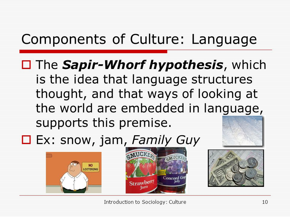 English Essays For High School Students Sapir Whorf Thesis Sociology
