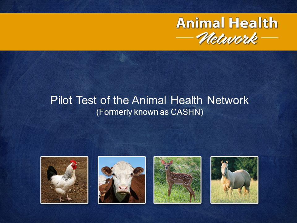 Pilot Test of the Animal Health Network (Formerly known as CASHN)