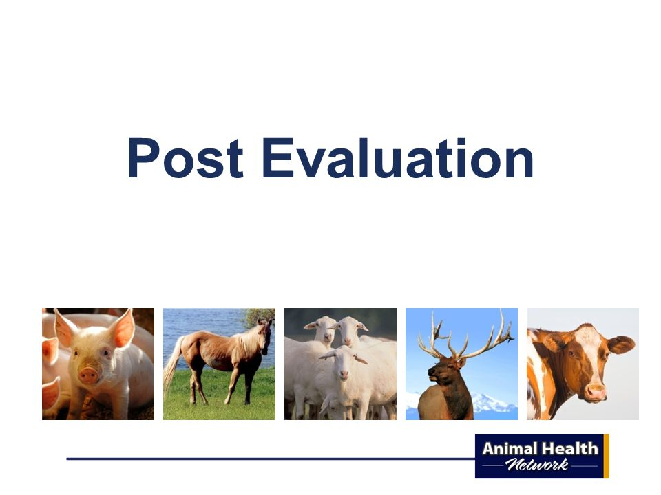 Post Evaluation