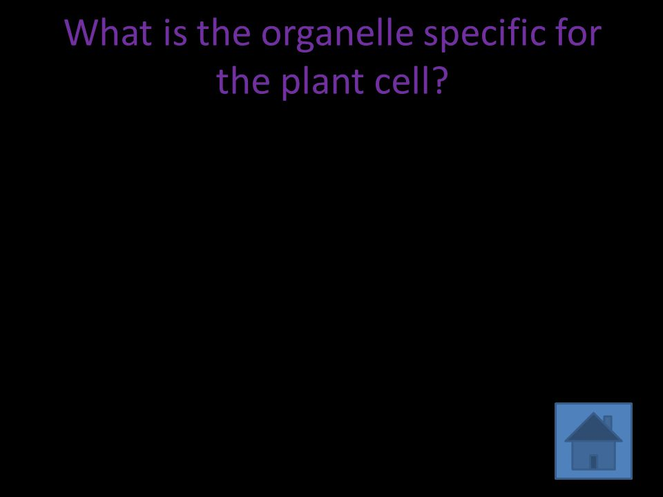 What is the organelle specific for the plant cell