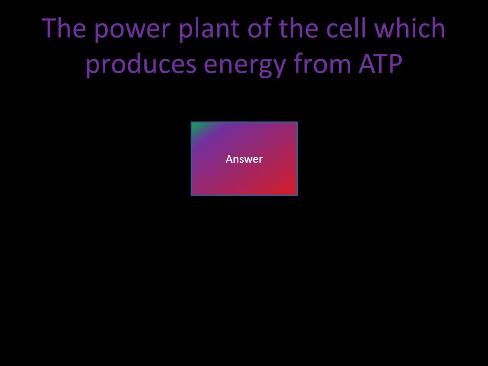 The power plant of the cell which produces energy from ATP Answer