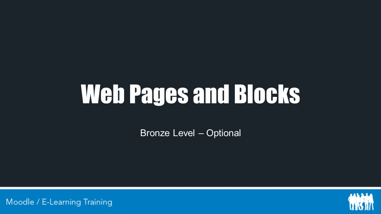 Web Pages and Blocks Bronze Level – Optional