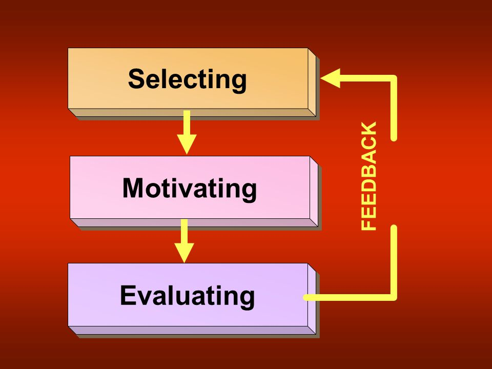 Selecting Motivating Evaluating FEEDBACK