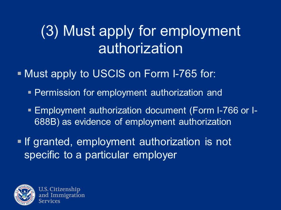 Employment Authorization Understanding The System Lisa S. Roney