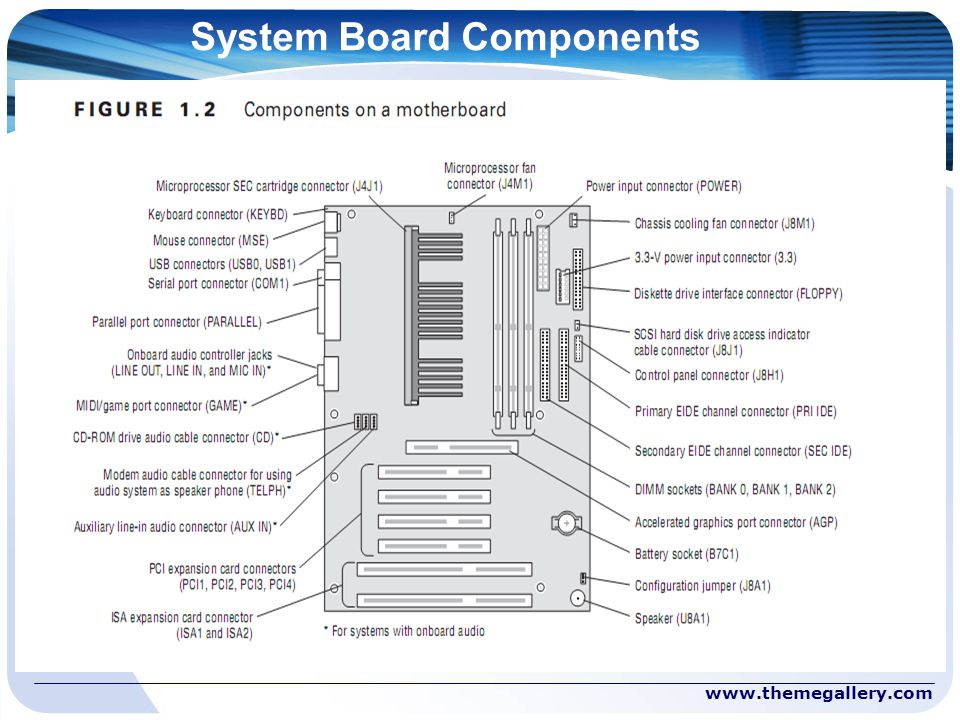 System Board Components