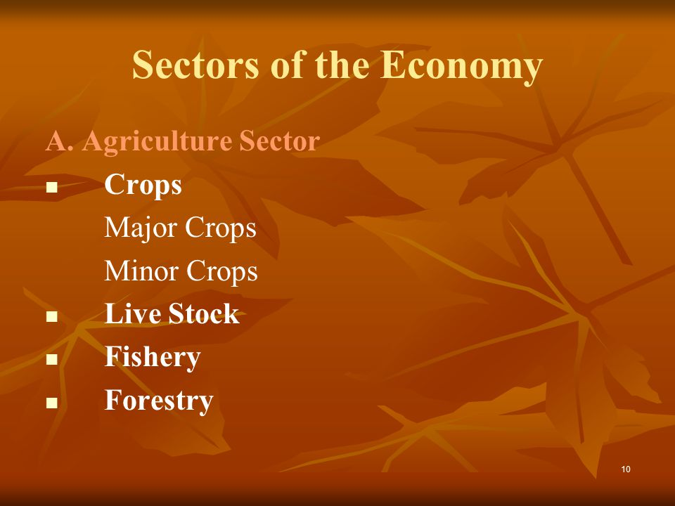 10 Sectors of the Economy A.