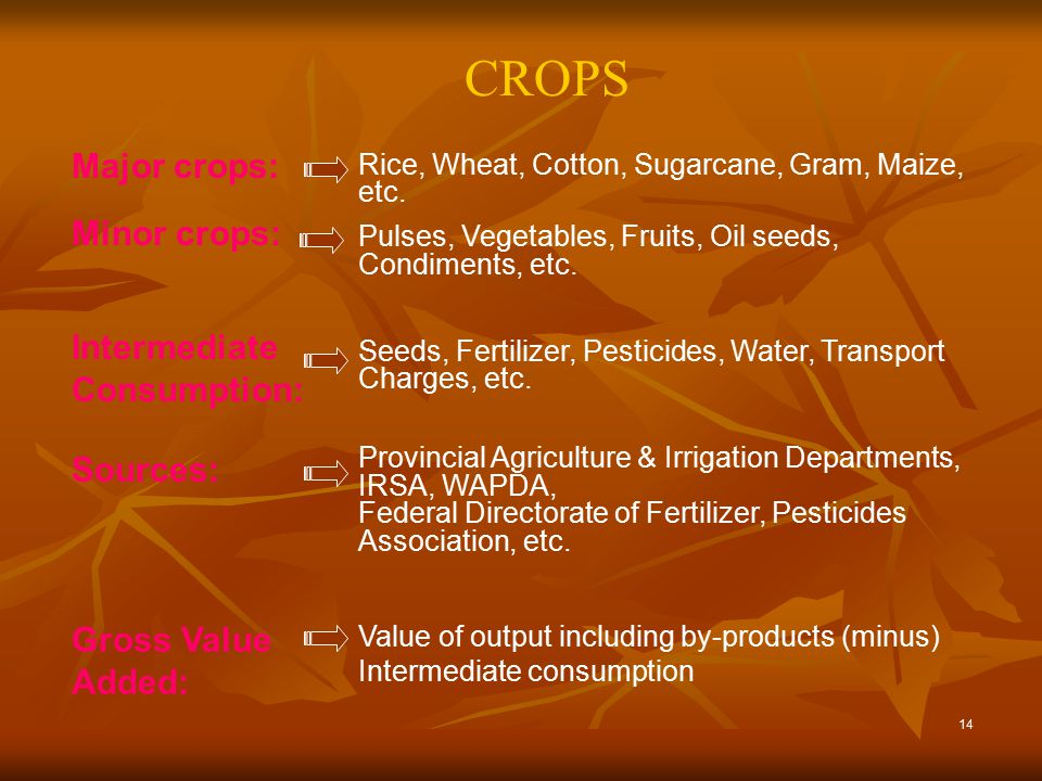 14 CROPS Value of output including by-products (minus) Intermediate consumption Gross Value Added: Provincial Agriculture & Irrigation Departments, IRSA, WAPDA, Federal Directorate of Fertilizer, Pesticides Association, etc.
