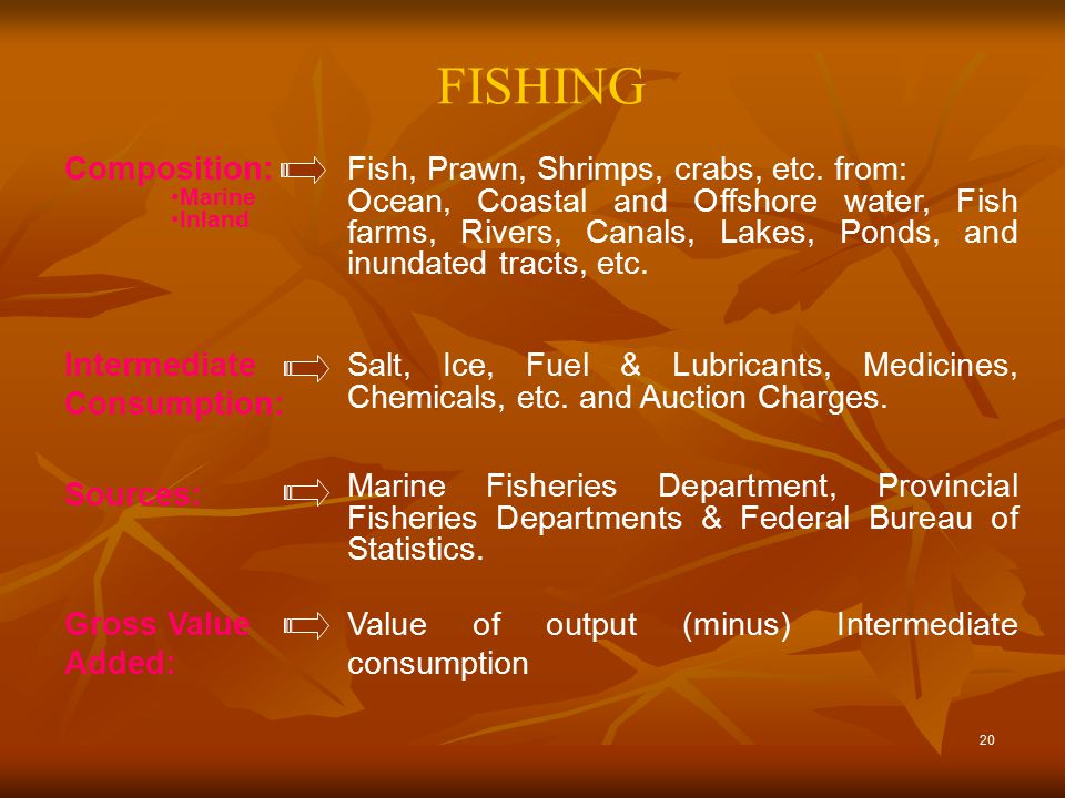 20 FISHING Value of output (minus) Intermediate consumption Gross Value Added: Marine Fisheries Department, Provincial Fisheries Departments & Federal Bureau of Statistics.