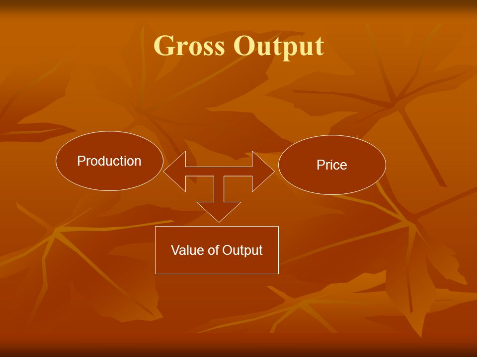 Gross Output Production Price Value of Output