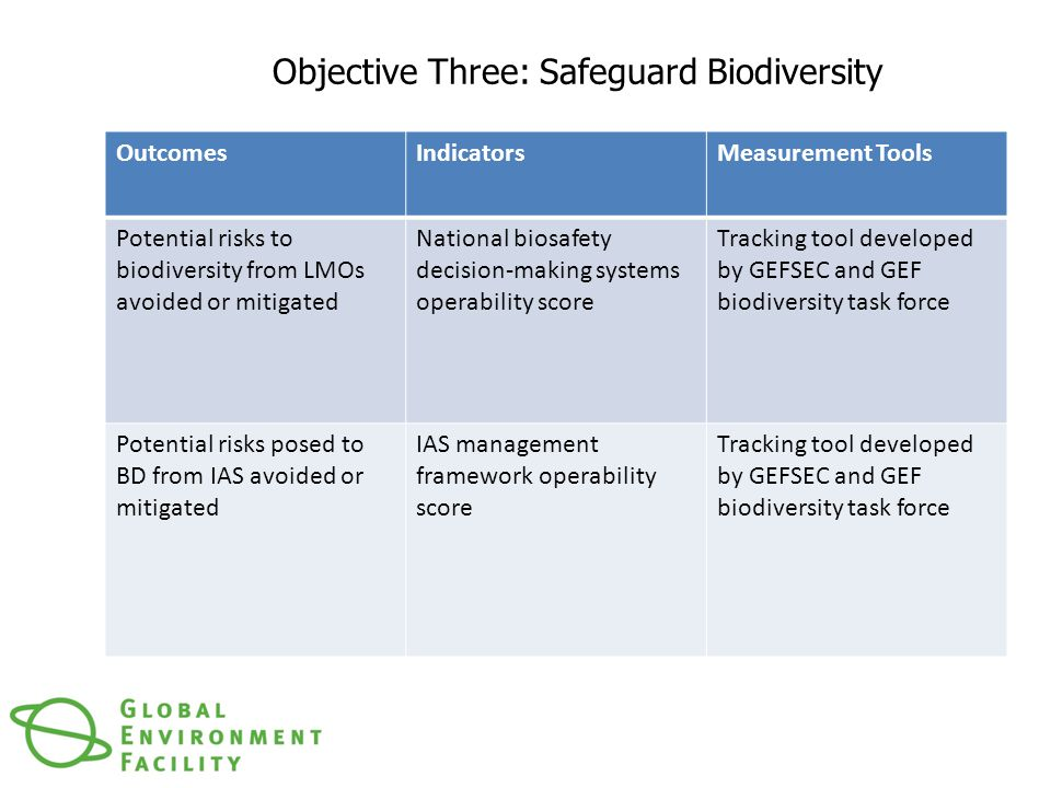 Objective Three: Safeguard Biodiversity OutcomesIndicatorsMeasurement Tools Potential risks to biodiversity from LMOs avoided or mitigated National biosafety decision-making systems operability score Tracking tool developed by GEFSEC and GEF biodiversity task force Potential risks posed to BD from IAS avoided or mitigated IAS management framework operability score Tracking tool developed by GEFSEC and GEF biodiversity task force