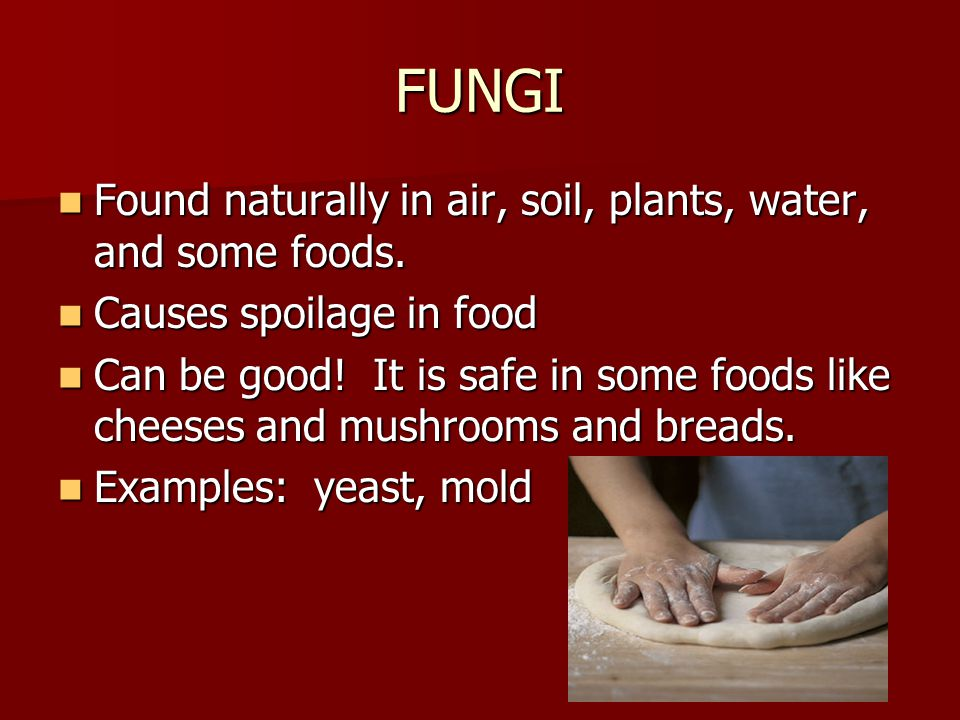 FUNGI Found naturally in air, soil, plants, water, and some foods.