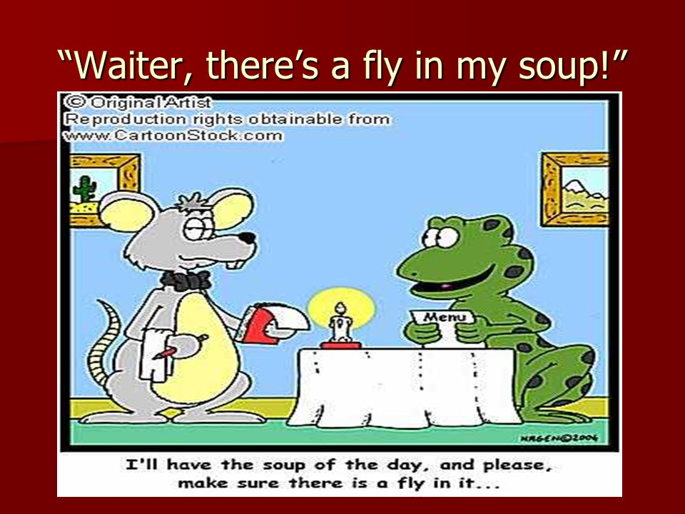 Waiter, there's a fly in my soup!