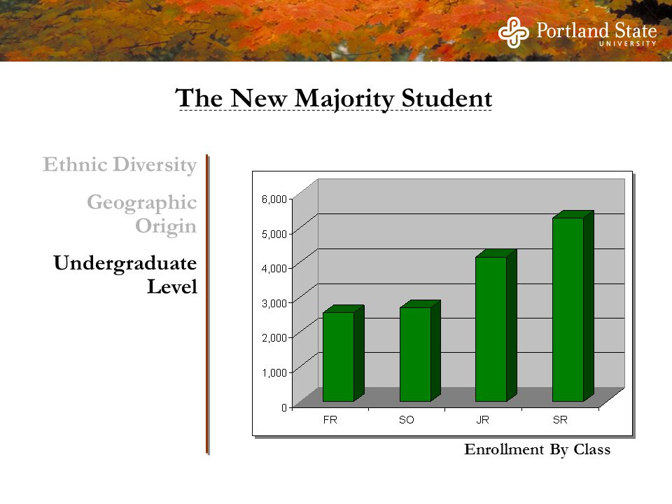 Enrollment By Class Ethnic Diversity Geographic Origin Undergraduate Level The New Majority Student