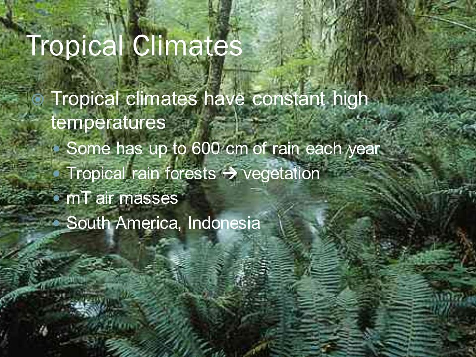 Tropical Climates  Tropical climates have constant high temperatures Some has up to 600 cm of rain each year Tropical rain forests  vegetation mT air masses South America, Indonesia
