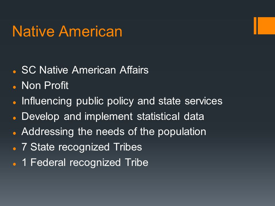 Native American SC Native American Affairs Non Profit Influencing public policy and state services Develop and implement statistical data Addressing the needs of the population 7 State recognized Tribes 1 Federal recognized Tribe