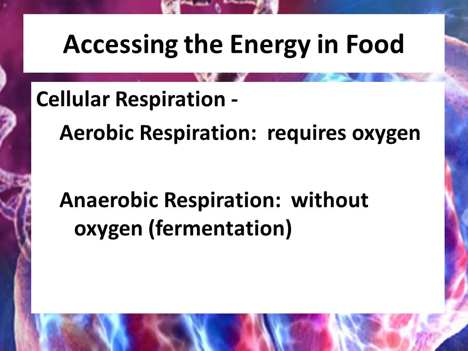 Accessing the Energy in Food Cellular Respiration - Aerobic Respiration: requires oxygen Anaerobic Respiration: without oxygen (fermentation)