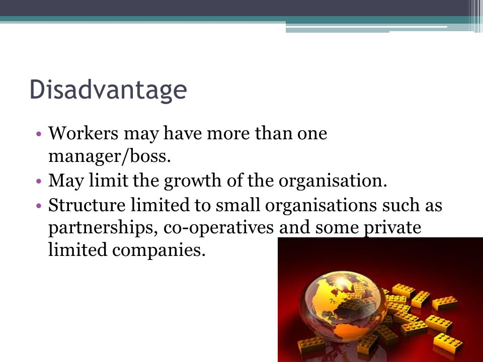 Disadvantage Workers may have more than one manager/boss. May limit the growth of the organisation. Structure limited to small organisations such as p