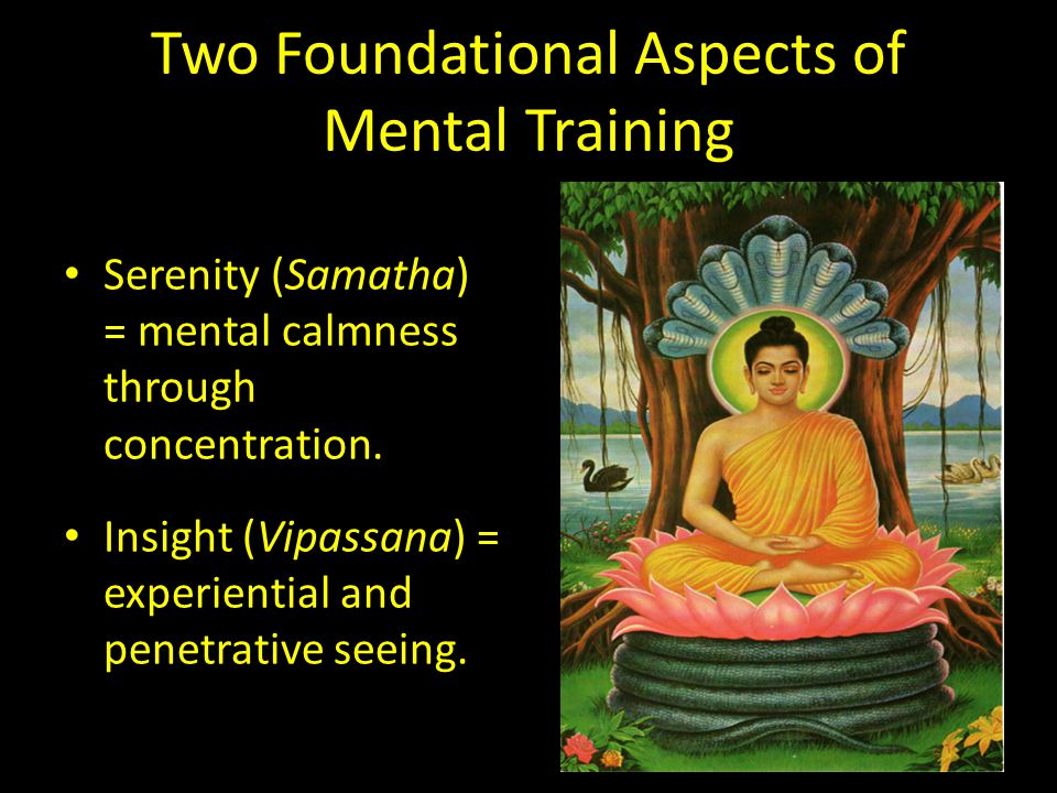 Two Foundational Aspects of Mental Training Serenity (Samatha) = mental calmness through concentration.