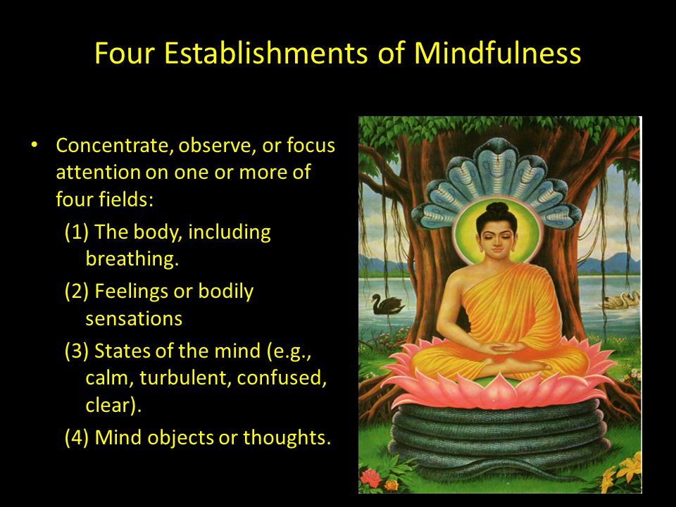 Four Establishments of Mindfulness Concentrate, observe, or focus attention on one or more of four fields: (1) The body, including breathing.